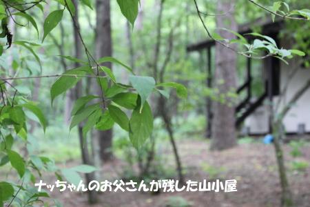 201200813_20.jpg