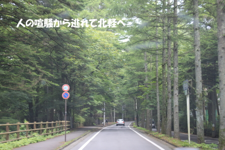 201200813_4.jpg