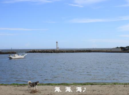 201200815_13.jpg