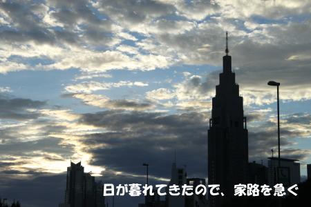 201200815_16.jpg
