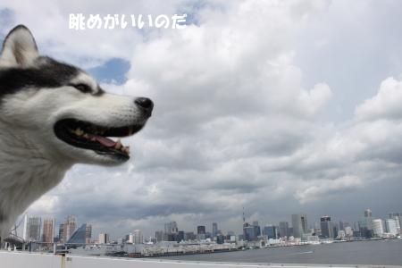 201200815_9.jpg