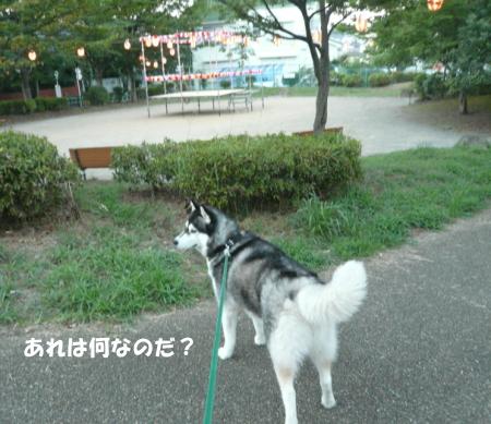 201200825_1.jpg