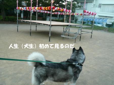201200825_2.jpg