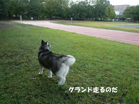 201200902_1.jpg