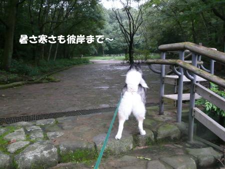 201200923_1.jpg
