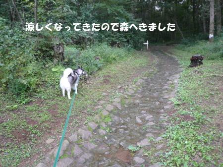 201200926_1.jpg