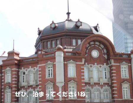 201200930_11.jpg