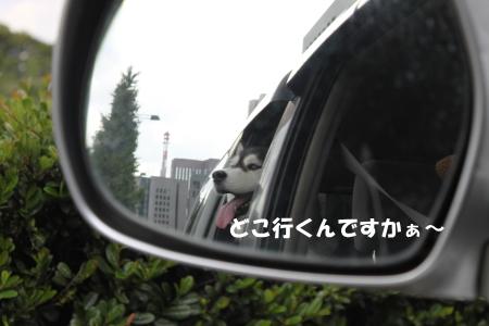201200930_3.jpg