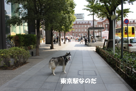 201200930_5.jpg