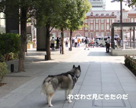 201200930_6.jpg
