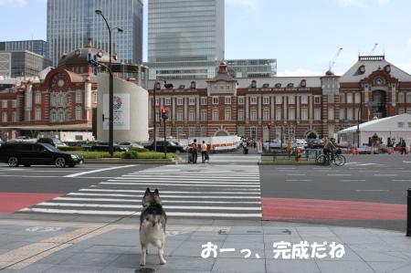 201200930_7.jpg