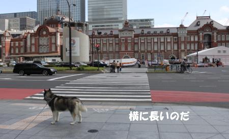 201200930_8.jpg