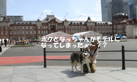 201200930_9.jpg