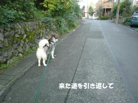 201201005_4.jpg
