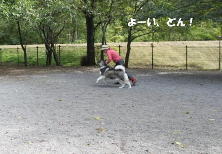 201201015_8.jpg