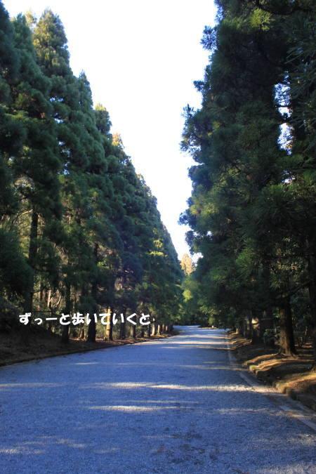 20120104_3.jpg