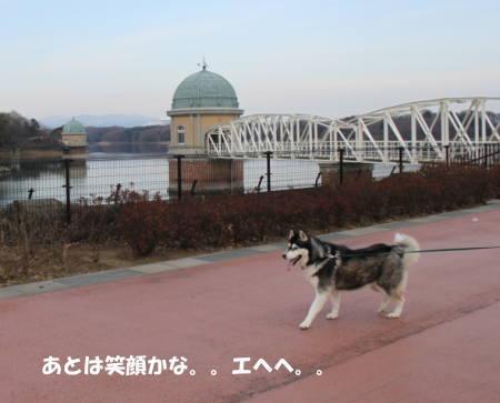 20120108_2.jpg