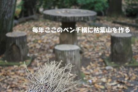 201201129_2.jpg