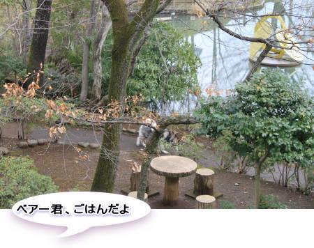 20120311_3.jpg