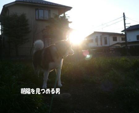 20120313_1.jpg