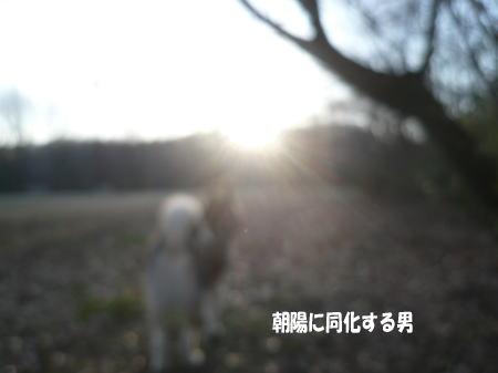 20120313_3.jpg