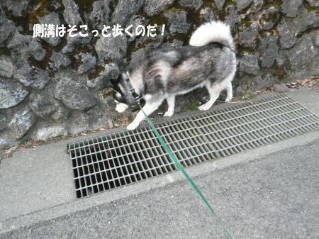 20120316_1.jpg