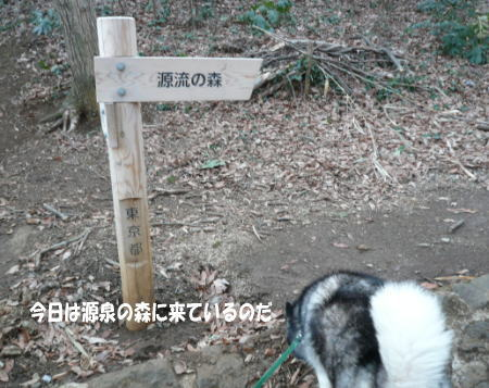20120316_2.jpg