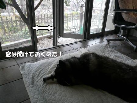 20120317_2.jpg