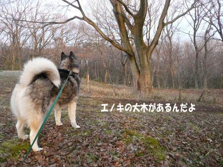 20120319_1.jpg