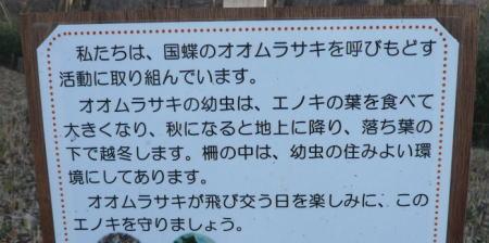 20120319_3.jpg