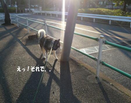20120322_1.jpg