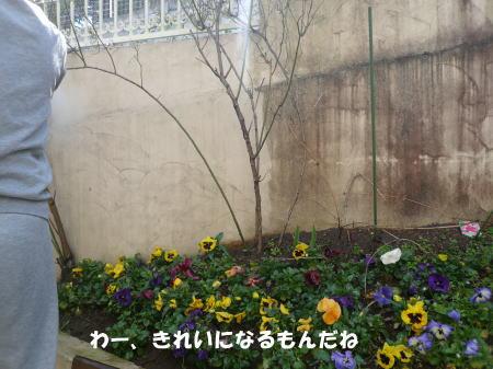 20120325_2.jpg