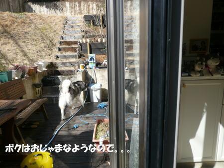 20120325_3.jpg