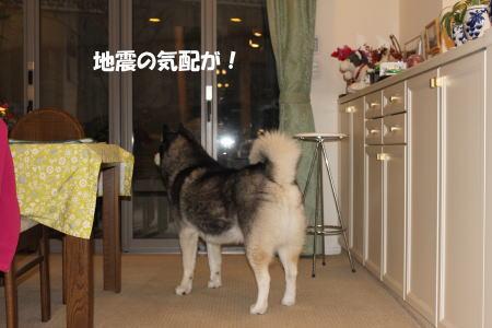 20120327_16.jpg