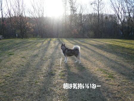 20120404_4.jpg