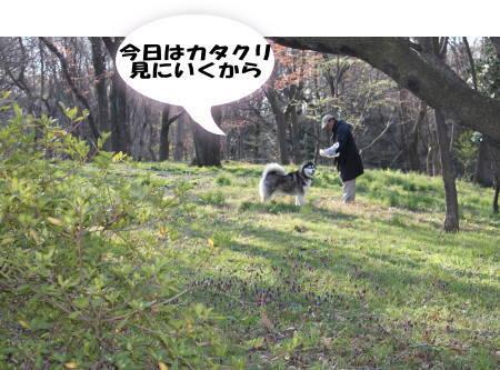 20120408_02.jpg