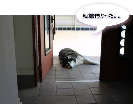 20120527_02.jpg
