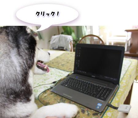 20120601_3.jpg