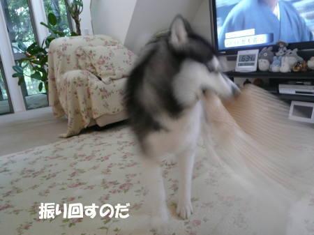 20120605_01.jpg