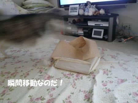 20120605_03.jpg