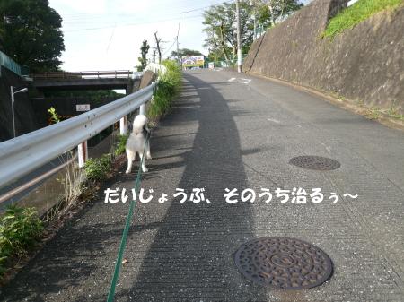 20120715_2.jpg