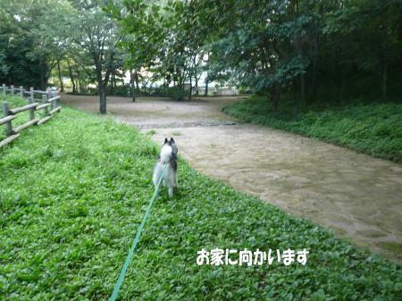 20120718_12.jpg