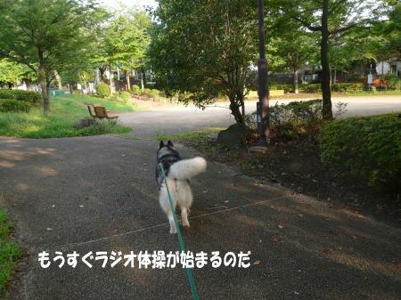 20120718_13.jpg