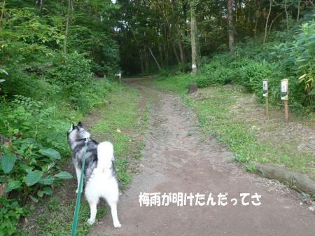 20120718_3.jpg