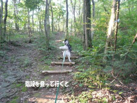 20120718_5.jpg