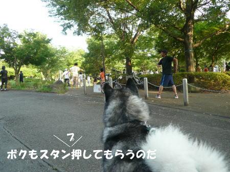 20120730_10.jpg