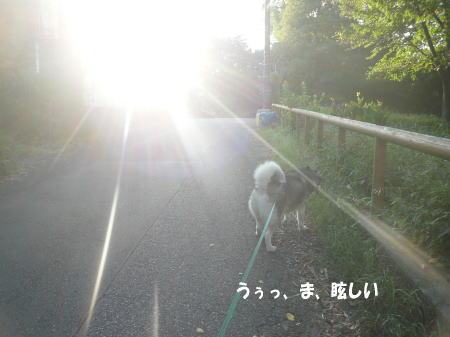 20120827_5.jpg