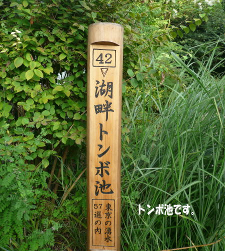 20120828_2.jpg