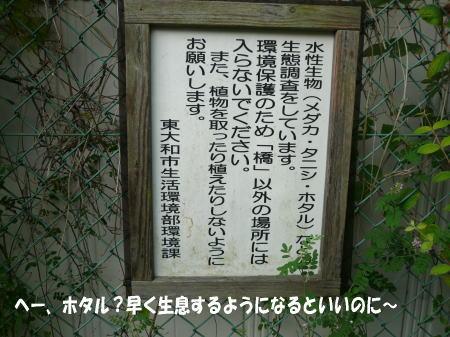 20120828_4.jpg