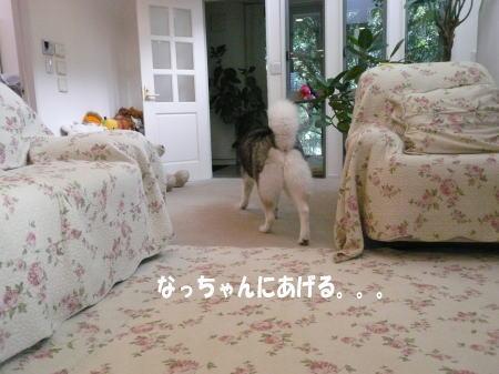 20120829_4.jpg